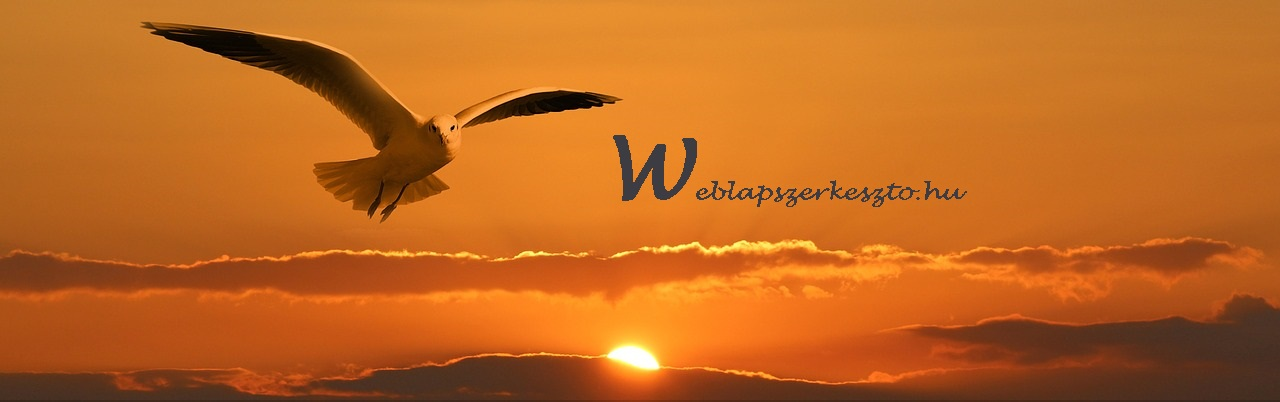 weblapszerkeszto.hu-sunset--eagle-_1280